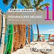 <名曲>ハワイアンミュージック 1 - Papalina Lahilahi -(4019)