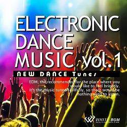エレクトロニックダンスミュージック vol.1 -New Dance Tunes-(4042)